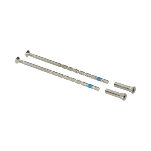Patentvijs 100 mm - Set van 2 stuks incl huls